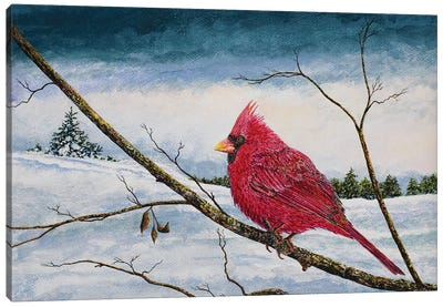 Cardinal In A Pastel Sky Canvas Art Print