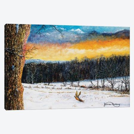 Fiery Sky Canvas Print #RDD27} by James Redding Art Print