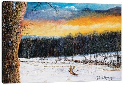 Fiery Sky Canvas Art Print