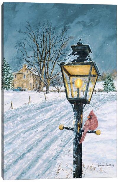 Winter Bird Canvas Art Print