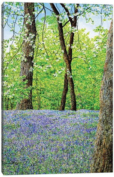 Blue Bells Canvas Art Print