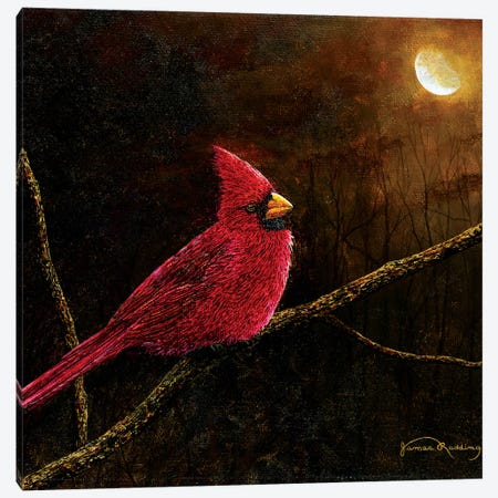Cardinal In The Moonlight Canvas Print #RDD5} by James Redding Canvas Art