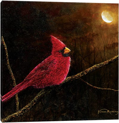 Cardinal In The Moonlight Canvas Art Print