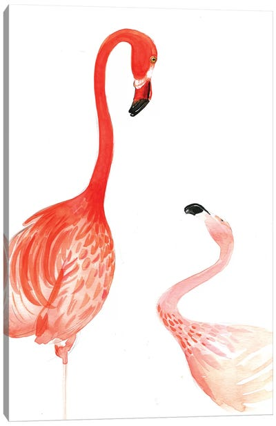 Flamingo Canvas Print #RDE63