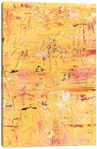 Citrus Skies Canvas Art Print