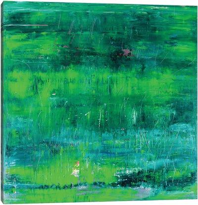 Green Tree Reflections Canvas Art Print