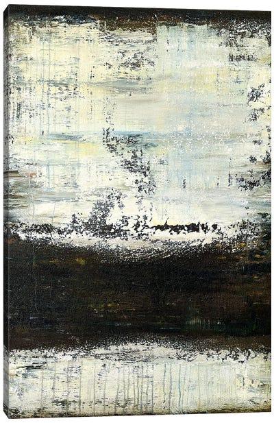 Midnight Snowstorm Canvas Art Print
