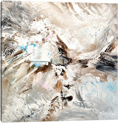 Bird's-Eye View Canvas Art Print