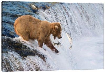 Fishing On The Edge Canvas Art Print