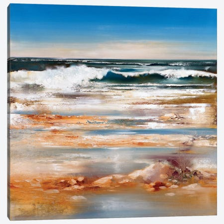 The Wave Canvas Print #RDS101} by Ron Di Scenza Canvas Art Print