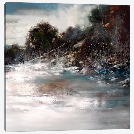 Winter Wind Canvas Print #RDS113} by Ron Di Scenza Canvas Artwork