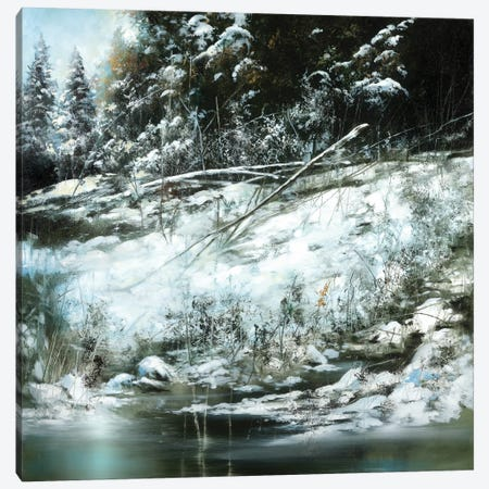 Winter's Edge Canvas Print #RDS114} by Ron Di Scenza Canvas Art Print