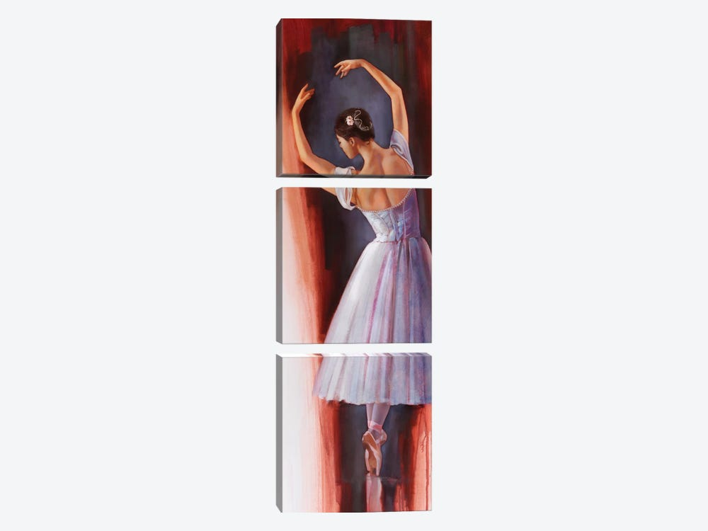 Ballet Dream by Ron Di Scenza 3-piece Canvas Artwork