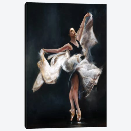 Butterfly Ballet Canvas Print #RDS20} by Ron Di Scenza Art Print