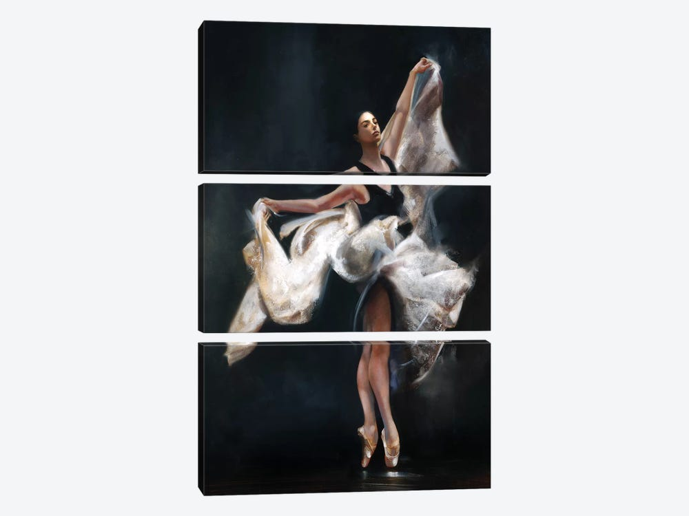 Butterfly Ballet by Ron Di Scenza 3-piece Canvas Wall Art
