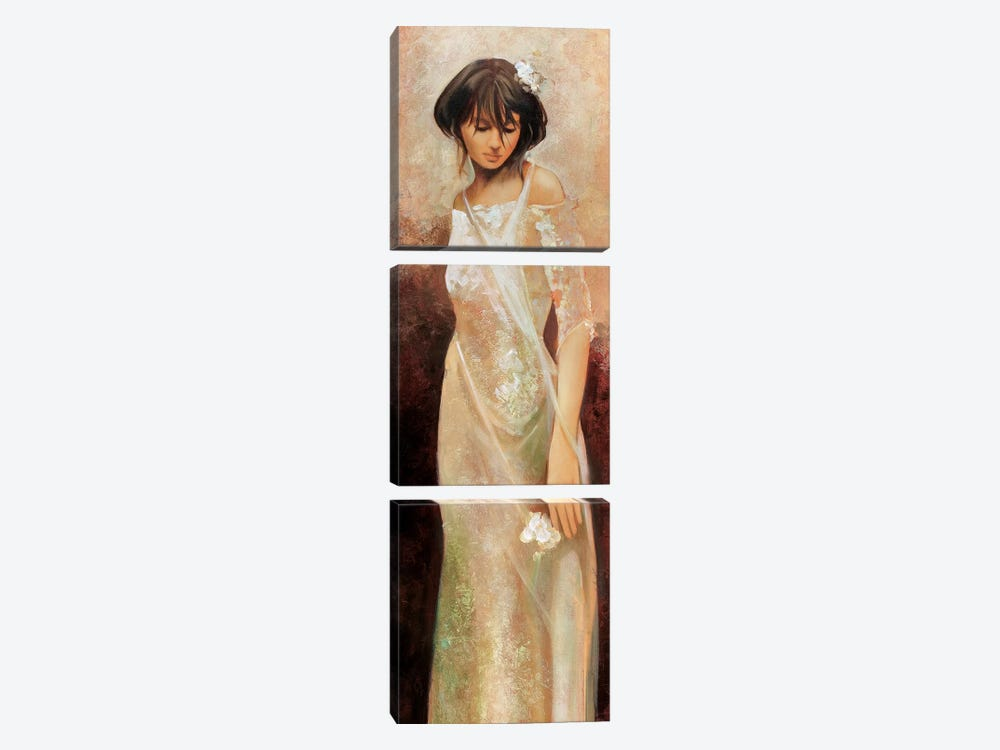 Fiorella by Ron Di Scenza 3-piece Canvas Artwork