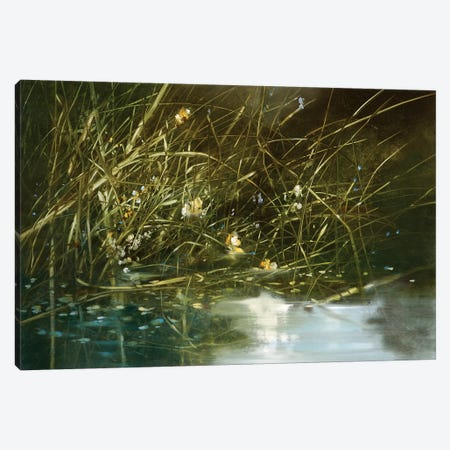 In The Weeds Canvas Print #RDS44} by Ron Di Scenza Canvas Art