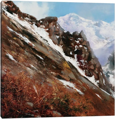 Mountain Slide Canvas Art Print