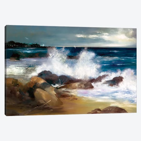 At The Shoreline Canvas Print #RDS7} by Ron Di Scenza Canvas Art