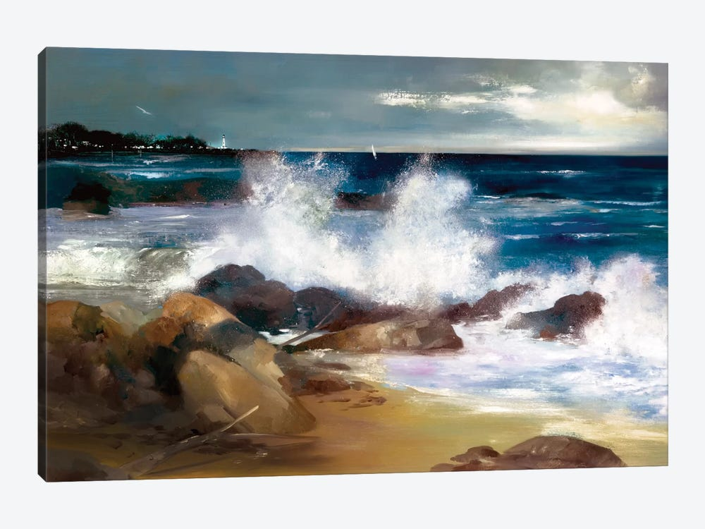 At The Shoreline by Ron Di Scenza 1-piece Canvas Art