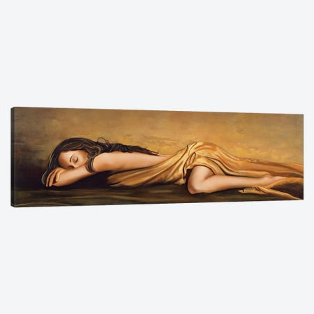 Resting Canvas Print #RDS82} by Ron Di Scenza Canvas Print