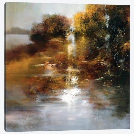 Autumn Light Canvas Print #RDS8} by Ron Di Scenza Canvas Print