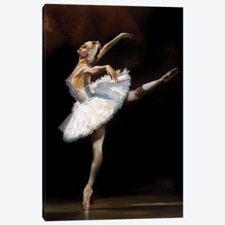 Swan Lake Canvas Print #RDS90} by Ron Di Scenza Canvas Artwork