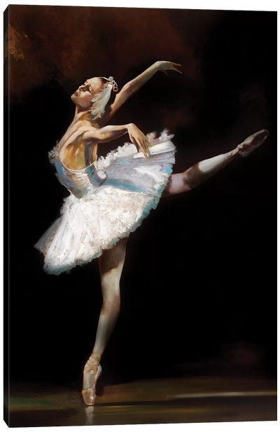 Swan Lake Canvas Art Print