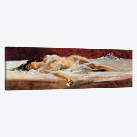 The Dream Canvas Print #RDS96} by Ron Di Scenza Art Print