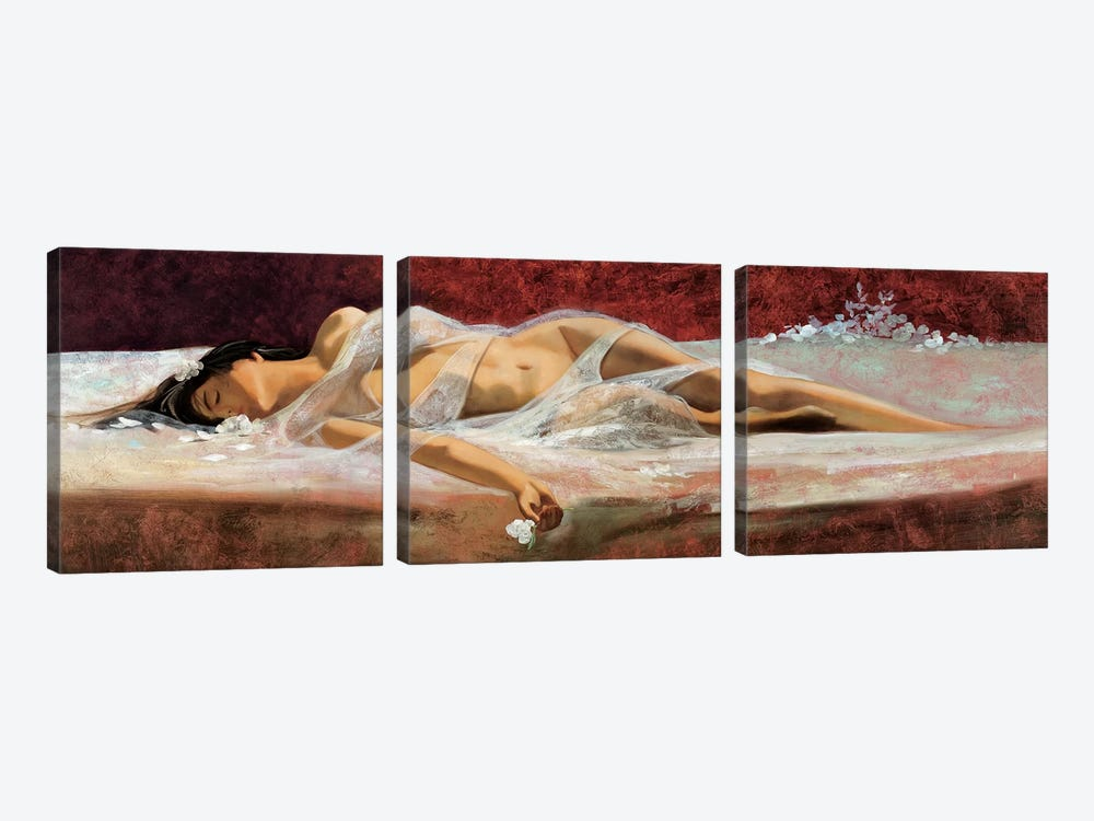 The Dream by Ron Di Scenza 3-piece Canvas Art Print