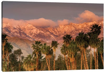 USA, California, Palm Springs. the San Jacinto and Santa Rosa mountain ranges frame the Desert Island Golf and Country Club. Canvas Art Print