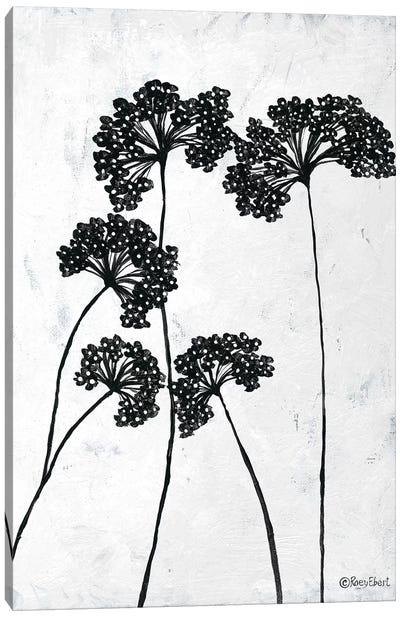 Queen Anne's Lace I Canvas Art Print