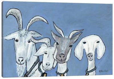 Goats Canvas Art Print
