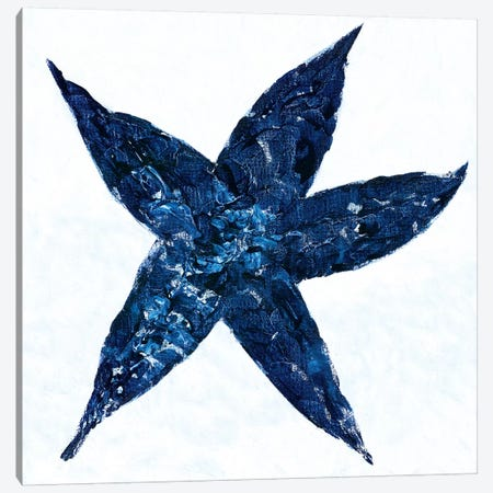 Midnight Starfish Canvas Print #REB4} by Roey Ebert Canvas Print