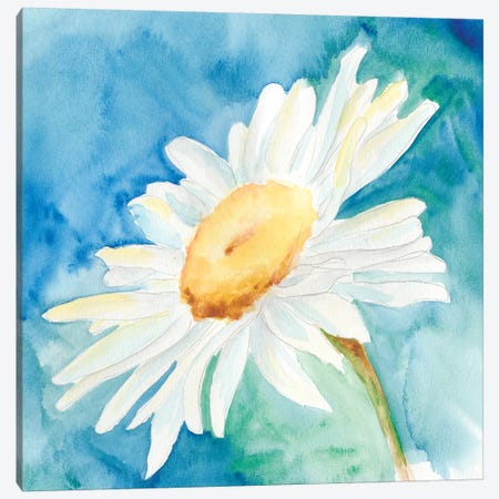 Daisy Sunshine I Canvas Print #REG16} by Regina Moore Canvas Wall Art