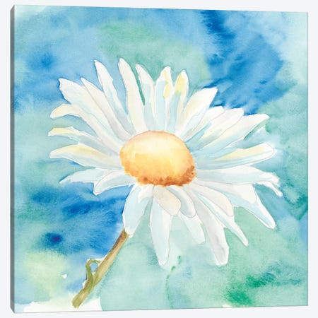 Daisy Sunshine II Canvas Print #REG17} by Regina Moore Canvas Artwork