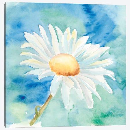 Daisy Sunshine II Canvas Print #REG17} by Regina Moore Canvas Artwork