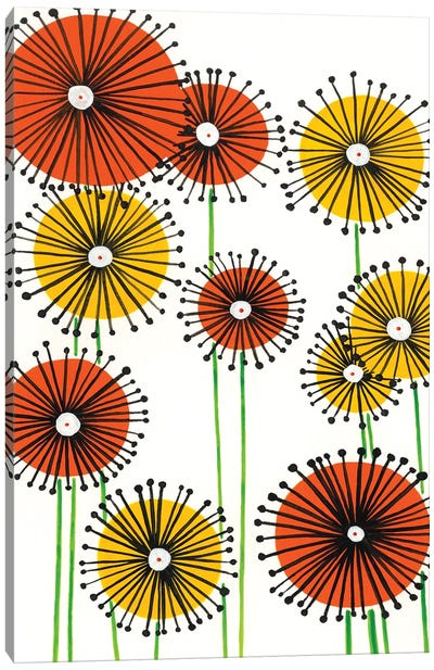 Flower Wheels II Canvas Art Print