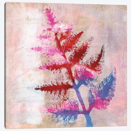 Dappled Fern I Canvas Print #REG264} by Regina Moore Canvas Art Print