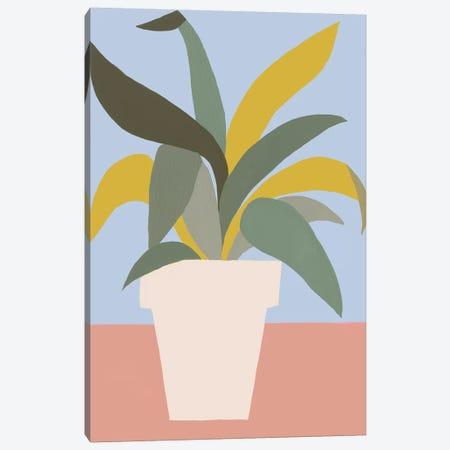 Ordinary Houseplant I Canvas Print #REG332} by Regina Moore Canvas Wall Art