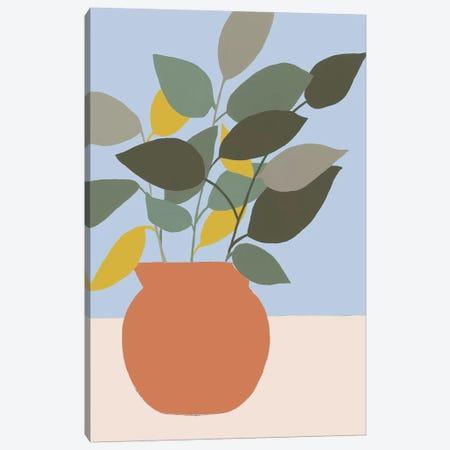 Ordinary Houseplant II Canvas Print #REG333} by Regina Moore Canvas Artwork
