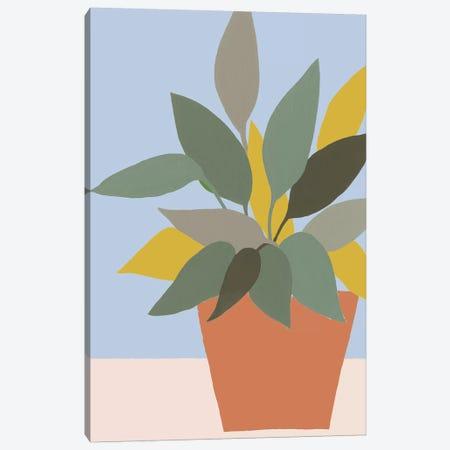 Ordinary Houseplant IV Canvas Print #REG335} by Regina Moore Canvas Art Print