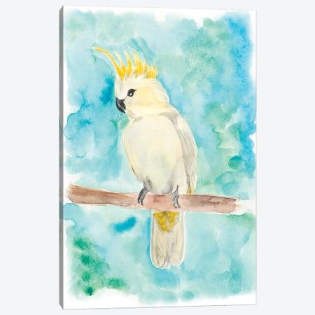 Sweet Tropical Bird II 3-Piece Canvas #REG37} by Regina Moore Canvas Wall Art
