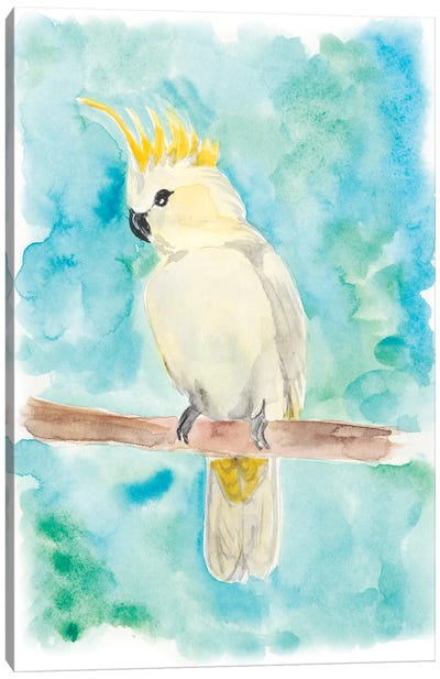 Sweet Tropical Bird II Canvas Art Print