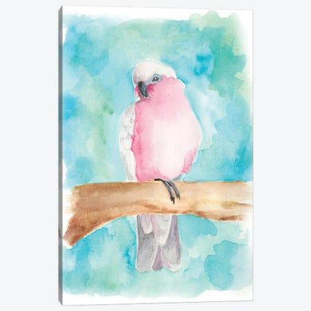 Sweet Tropical Bird III Canvas Print #REG38} by Regina Moore Canvas Art Print