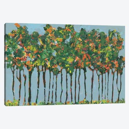 Sunset Trees III Canvas Print #REG415} by Regina Moore Canvas Artwork