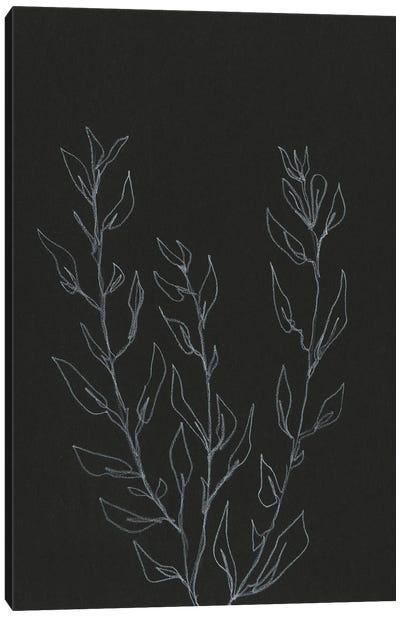 Simple Stalk II Canvas Art Print