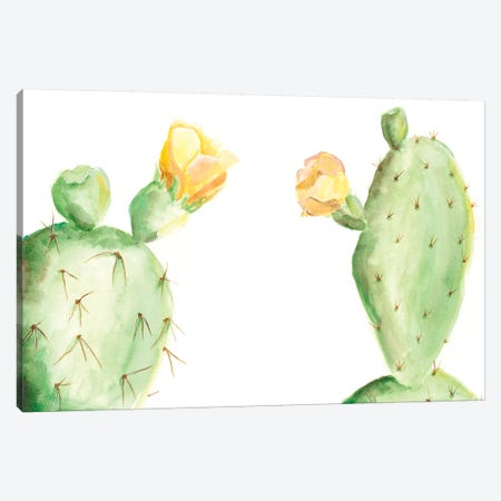 Spiny Desert Plants I Canvas Print #REG58} by Regina Moore Art Print