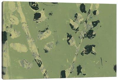 Verdant Branch II Canvas Art Print