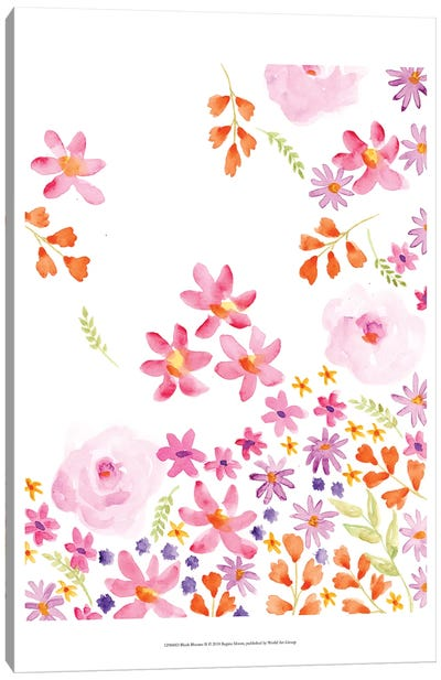 Blush Blooms II Canvas Art Print